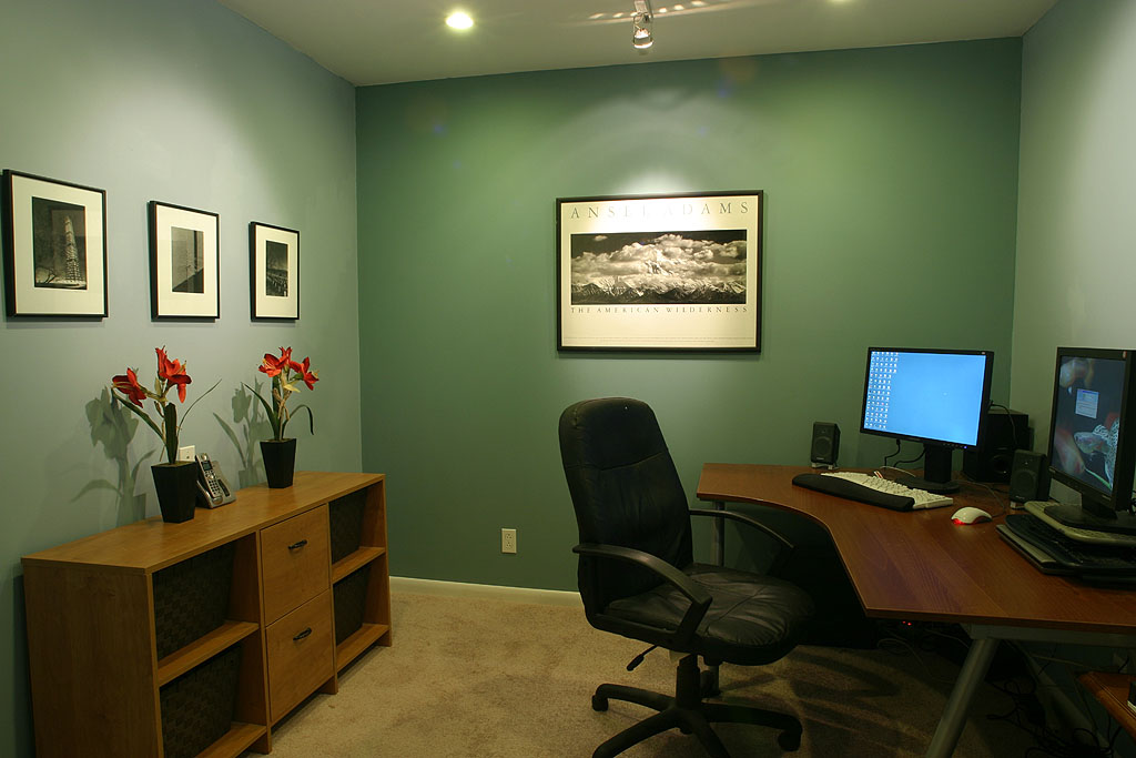 Basement Office - basement renovation ideas